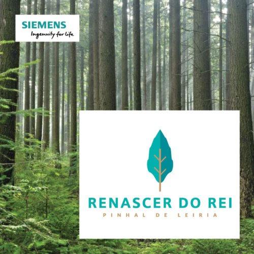 rebirth of the king Renascer do Rei Siemens